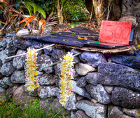 Leis south of Hana where there is a lava block wall on both sides of the road.
