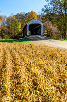 The McAllister Covered Bridge crosses Little Raccoon Creek on County Road East 400 South, in Parke County. This single span Burr Arch Truss structure has a length of 126 feet, or 144 feet including th